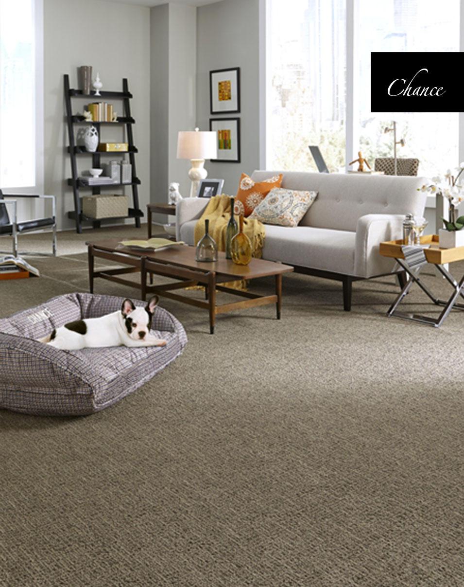Tuftex Carpet Warranty Best Accessories Home 2017