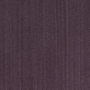Diablo-Flooring-Royalty-Carpet-Bella-Noche-R01820004