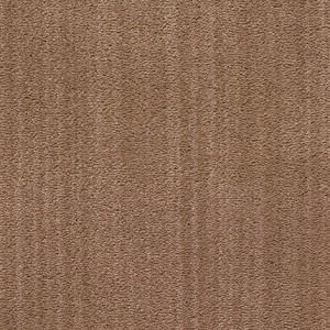 Diablo-Flooring-Royalty-Carpet-Bella-Noche-R01820005