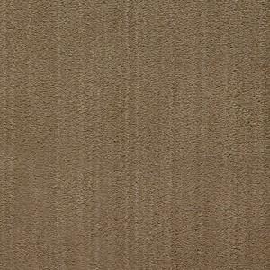 Diablo-Flooring-Royalty-Carpet-Bella-Noche-R01820008