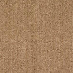 Diablo-Flooring-Royalty-Carpet-Bella-Noche-R01820010
