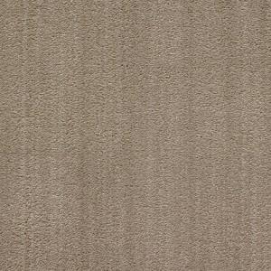 Diablo-Flooring-Royalty-Carpet-Bella-Noche-R01820013