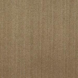Diablo-Flooring-Royalty-Carpet-Bella-Noche-R01820014