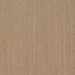 Diablo-Flooring-Royalty-Carpet-Bella-Noche-R01820019
