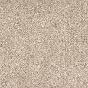 Diablo-Flooring-Royalty-Carpet-Bella-Noche-R01820027